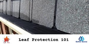 leaf protection